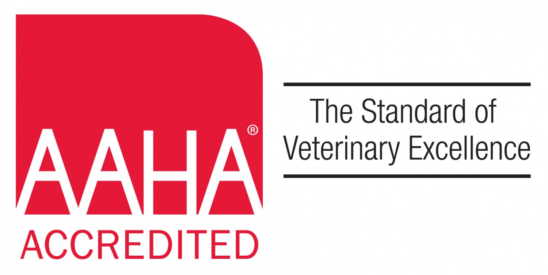 AAHA American Animal Hospital Association accredited veterinary hospital in cape elizabeth, portland, falmouth, scarborough, south portland, maine